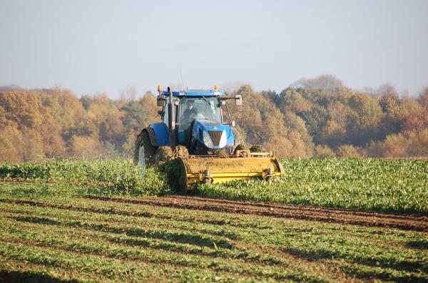 Zašto BiH ne može zabraniti uvoz poljoprivrednih proizvoda