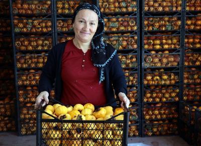 Nakon uspjeha čipsa od smokve, turska poduzetnica predstavila suhu kaki jabuku