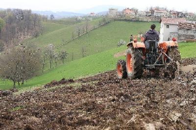 Šemsudin Dedić: Evropski fondovi su spas bh. poljoprivrede